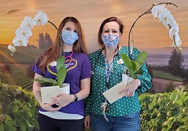 Fieldstone nurses