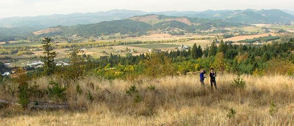 chehalem ridge vista