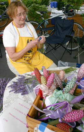 ursula working with lavender