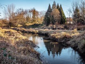 Cedar Mill Creek